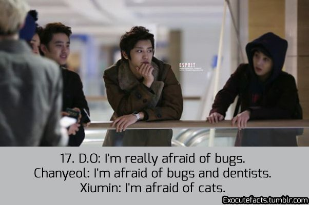Exo Facts....I'm afraid of all those things....again, I repeat, exo are my seoulmates x1000