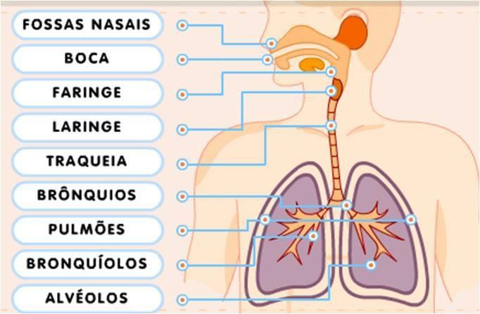 Respiração - Posto de Saúde