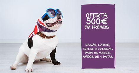 Oferta de 500€ em prémios a 25 fãs da Love Pet Food