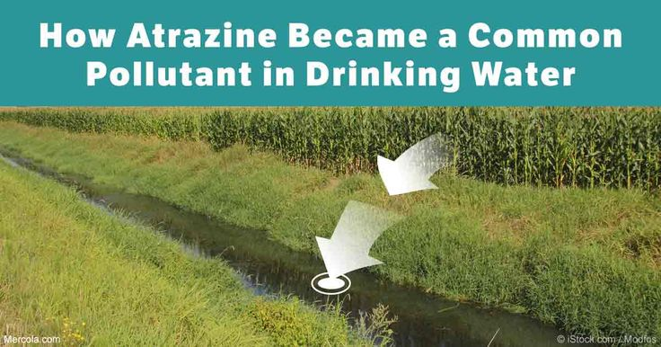Atrazine is the second most commonly used herbicide in the U.S., and is being applied to golf courses, lawns and food crops each year. http://articles.mercola.com/sites/articles/archive/2016/10/19/atrazine-health-effects.aspx