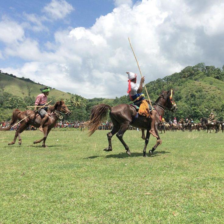 """""""Pasola Tradisi perang-perangan dengan menunggang kuda sambil menyerang lawan dengan lembing .  Pasola  ini tidak hanya sebagai bentuk keramaian masyarakat…"""""""