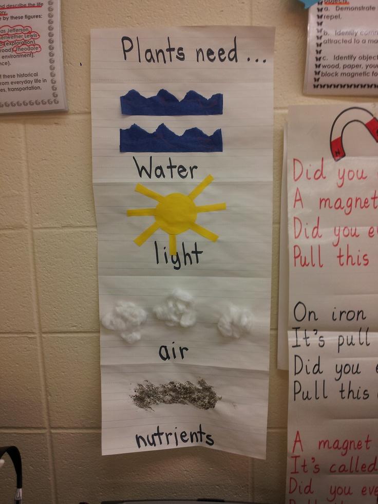 "Plants Poster- ""Taken"" from Mrs. Googe's 1st grade class :)"