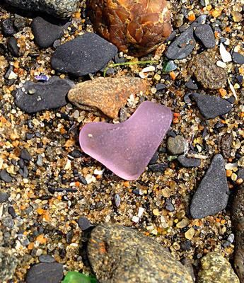 Purple Heart - July 2013 Sea Glass Photo Contest: ~ submitted by Jessica Stevens in Providence, Rhode Island  Where was this photo taken?   Narragansett Bay, Rhode Island   Date, time of day, and weather
