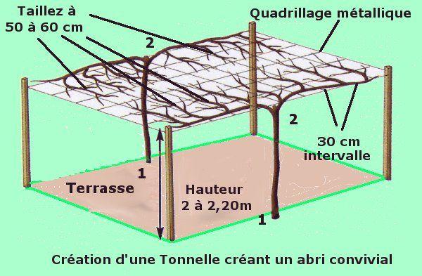 cr ation d 39 une tonnelle agr able l 39 aide de kiwi ou vignes outdoor potager pinterest. Black Bedroom Furniture Sets. Home Design Ideas