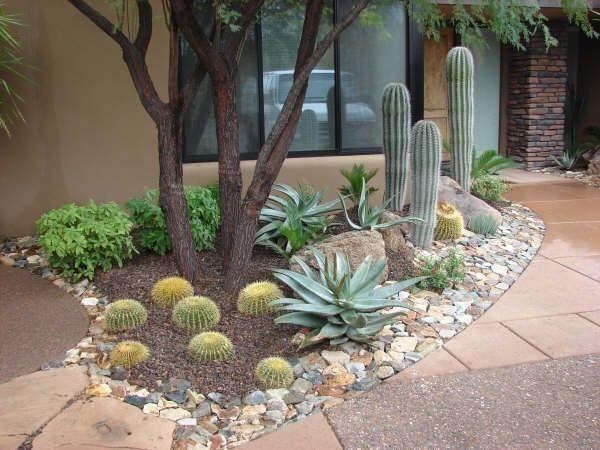 Front Yard Az Landscape | Arizona Landscaping Ideas