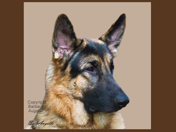 german shepherd dog art tile coaster