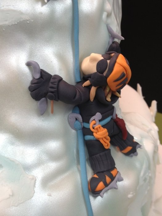 33 Best Rock Climbing Cake Images On Pinterest Birthdays