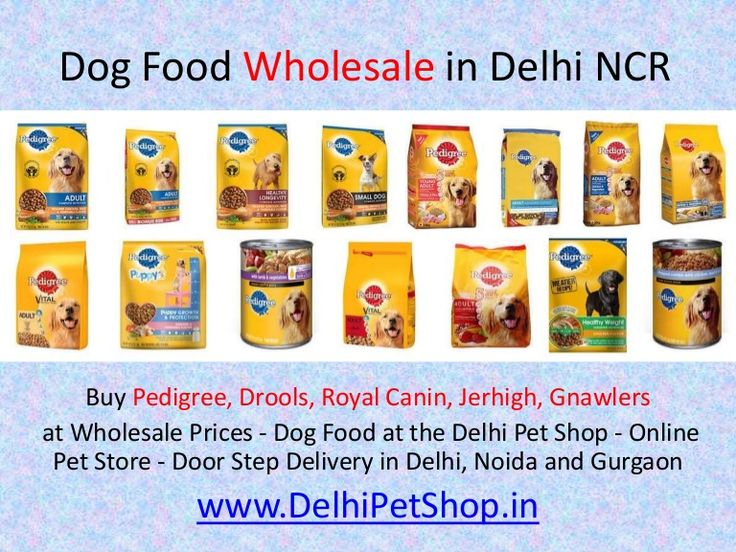 Buy Pedigree, Drools, Royal Canin, Jerhigh, Gnawlers  at Wholesale Prices - Dog Food at the Delhi Pet Shop - Online Pet Store https://www.slideshare.net/PetShopDelhi/dog-food-wholesale-in-delhi-noida-gurgaon