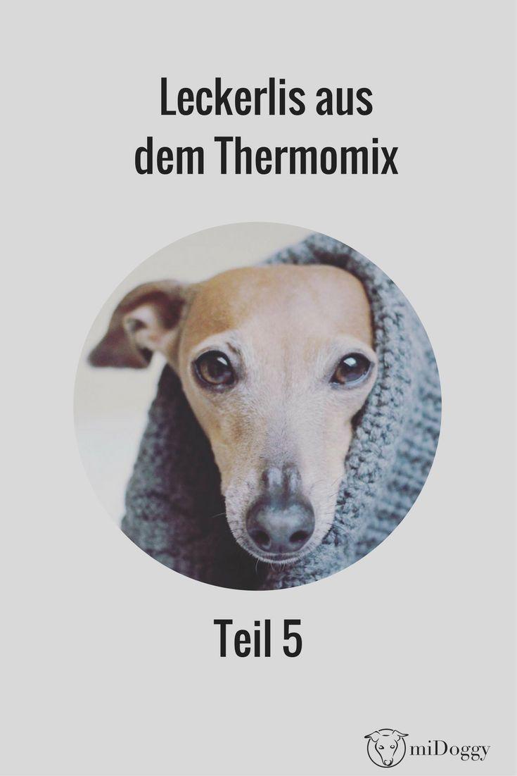 Hier gelangt ihr zum 5. Teil der Leckerlirezepte für den Thermomix.