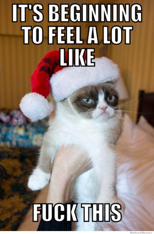 20 Hilarious Christmas Memes