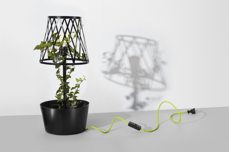 Green Lamp by SIESTA | SHOWROOM