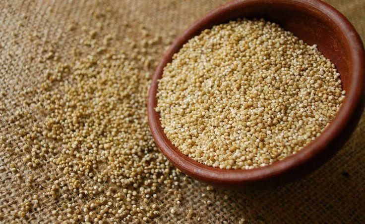 """Já ouviu falar da """"proteína em grão"""" Apresentamos-lhe a quinoa. Experimente! #Quinoa #receitas #cozinha #alimentos #quinoa #grão #saudável #alimentação #vitaminas #minerais"""