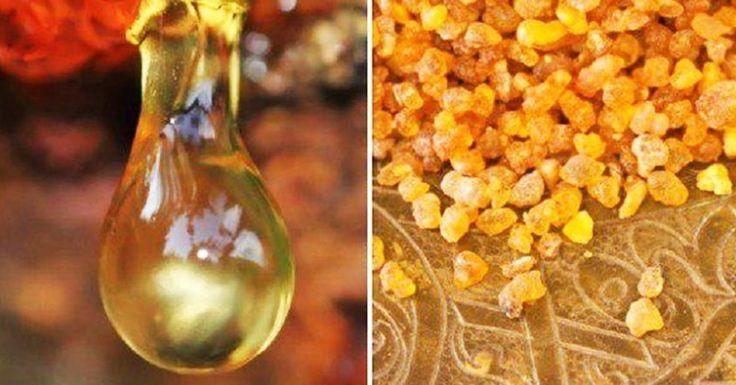 Это эфирное масло сильнее химиотерапии уничтожает раковые клетки! Узнай больше-смотри ВИДЕО!