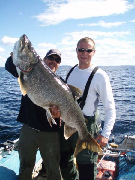 Best 25 Lake Trout Fishing Ideas On Pinterest Trout