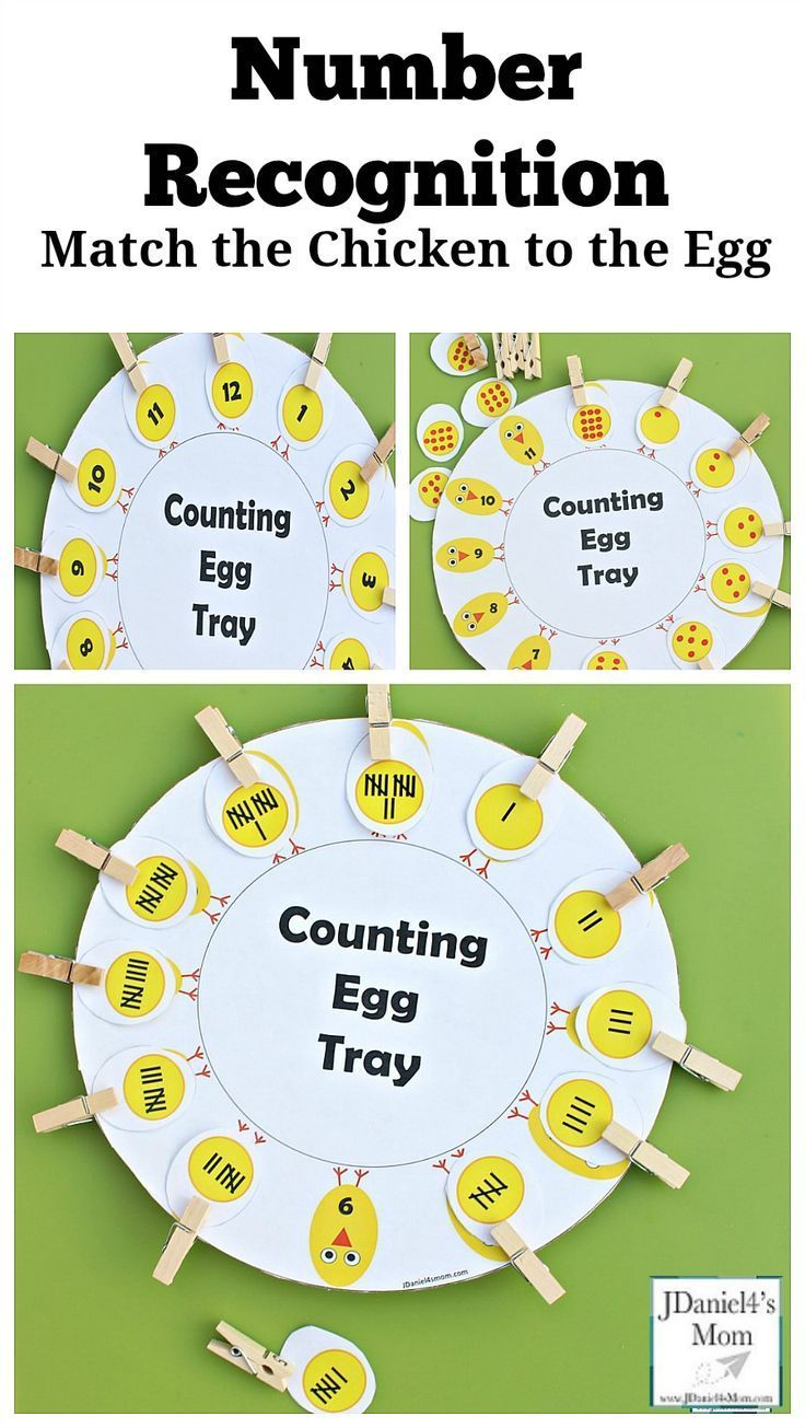 Number Recognition Counting Egg Tray Printable