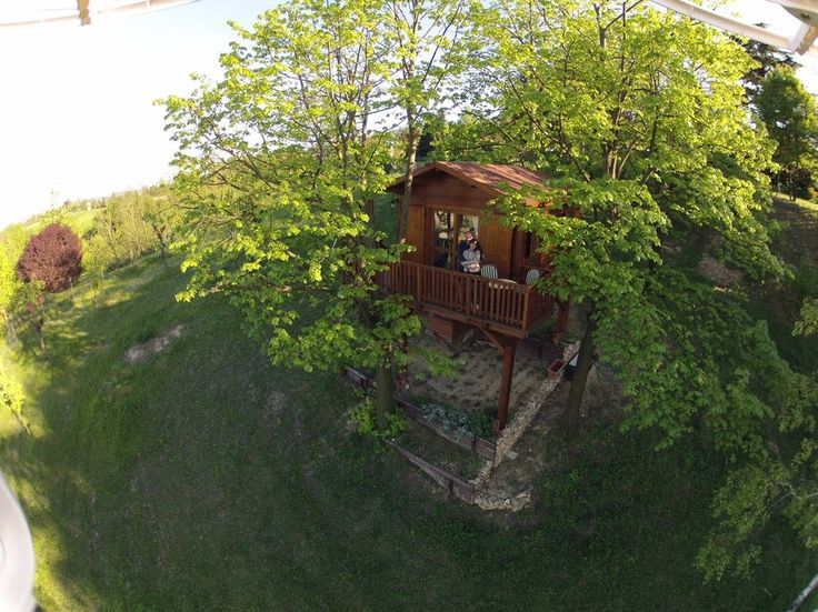 Treehouse in San Salvatore Monferrato, Italy. A wonderful suspended nest, an amazing panoramic view on the hills, among the fragrances of the linden trees and other aromatic herbs. A garden with solarium and a swimming pool (seasonal opening) surrounded by blooming peaceful nature. The garden...