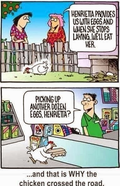 This is stupid and I love it. Look at her face! Hahaha  - I <3 chicken humor!!