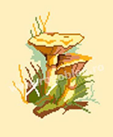 Cod produs 10.43 Ciuperci 9 Culori: 12 Dimensiune: 9 x 11cm Pret: 30.50 lei