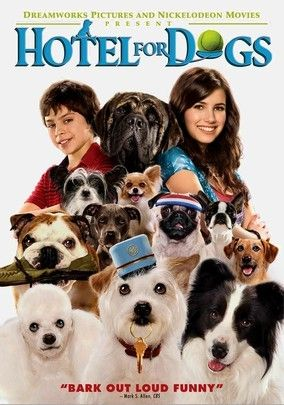 Hotel for Dogs (2009) Placed in a foster home that doesn't allow pets, 16-year-old Andi (Emma Roberts) and her younger brother, Bruce (Jake T. Austin), turn an abandoned hotel into a home for their dog. Soon other strays arrive, and the hotel becomes a haven for every orphaned canine in town. But the kids have to do some quick thinking to keep the cops off their tails. Lisa Kudrow and Don Cheadle also star in this charming comedy based on a novel by Lois Duncan.