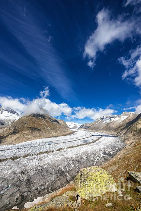 The Great Aletsch Glacier (Aletschgletscher) in Switzerland, part of the UNESCO World Heritage Site Swiss Alps Jungfrau-Aletsch by Matthias Hauser. Click here to purchase a poster, print or canvas print $32: http://matthias-hauser.artistwebsites.com/featured/the-great-aletsch-glacier-and-deep-blue-sky-matthias-hauser.html  30 days money back guarantee.