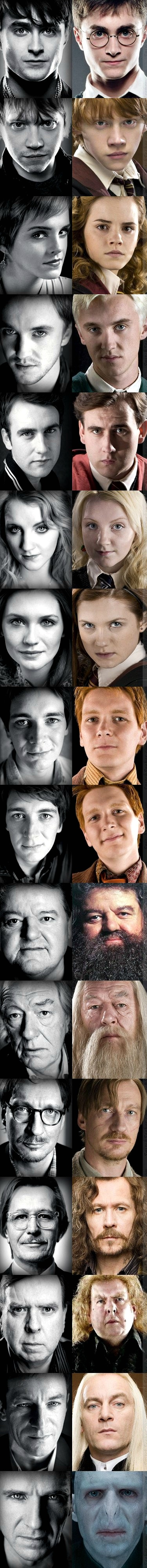 Vanna, Weasly's, Draco, Harry Dumbledor, Hagrid and Petegrew look most alike