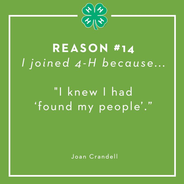 Reason #14: Belonging. I will always love my 4H family and my crazy State Ambie Family. #stateambielifestyle