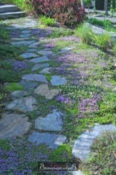 Садовые дорожки из природного камня, садовые дорожки из камня фото, идеи садовых дорожек из камня, к