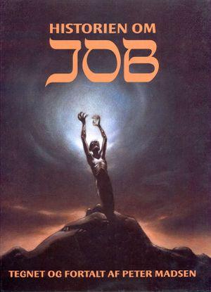 Peter Madsen, Job