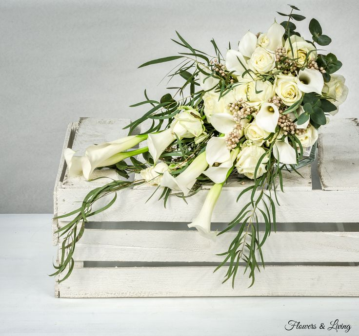 Bílý převis | Flowers - LivingFlowers – Living