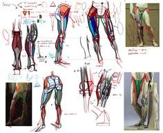 Analytical Figure Drawing - CGMA 2D Academy Figure Drawing - CGMA 2D Academy #anatomy #muscles #bones #howto #tutorial #male #man #men #pose #shape #figure #drawing