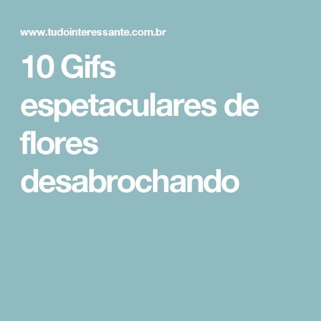 10 Gifs espetaculares de flores desabrochando