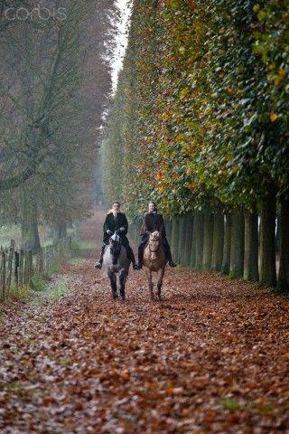 Fall ride-Countryside Manor