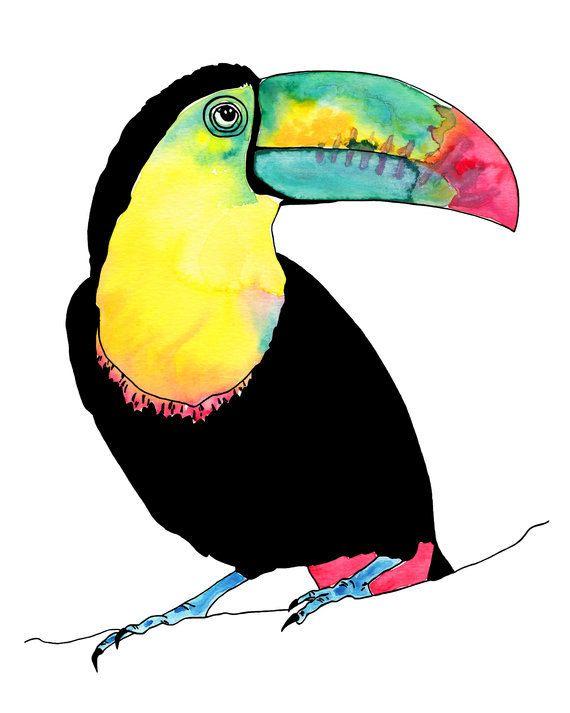 Toucan Watercolour tropical art print blue green bird yellow bird wings on Etsy, £15.98