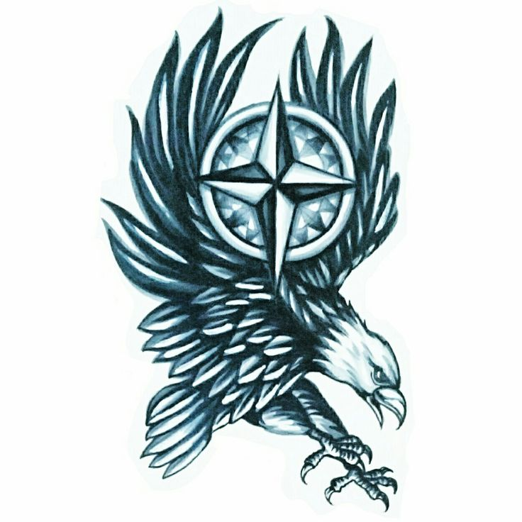 #SkinEvolutionTattoo #KONOMI #konomiangel #tattoo #design #blackandgray #realistic #eagle #whiteheadeagle #compass #タトゥー #デザイン #鷲 #白頭鷲 #コンパス #女性彫師