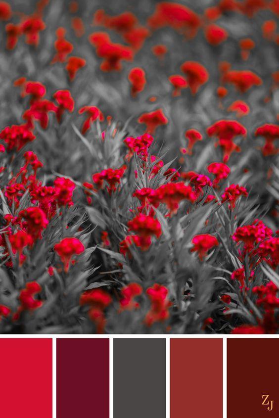250a5051c8dd0 Сочетание красного и серого | Red palette, combinations (Таблицы ...