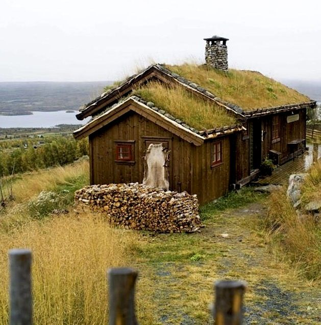 norwayCabin, Norwegian, Blue House, Cottages, Places, Grass Roof, Grass Tops, Wood House, Norway