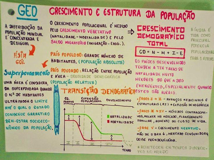 EU ESCOLHI ESTUDAR: MAPA MENTAL - CRESCIMENTO E ESTRUTURA DA POPULAÇÃO