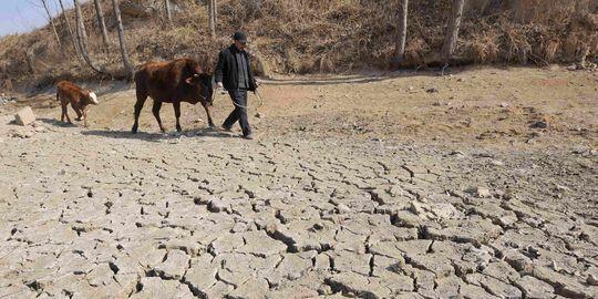 Les effets combinés de la démographie et du réchauffement climatique font craindre le pire pour les régions où les ressources en eau sont déjà sur-utilisées, selon une étude américaine. Réchauffement climatique, croissance démographique, pollution......
