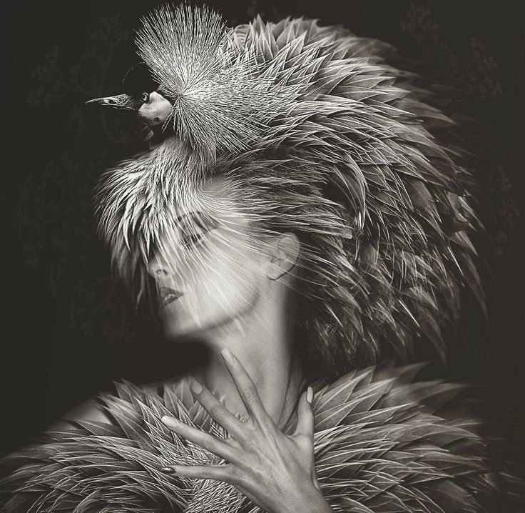 """Beauté Aviaire"": Photographing Models and Birdlife on Separate Occasions by Lee Howell"