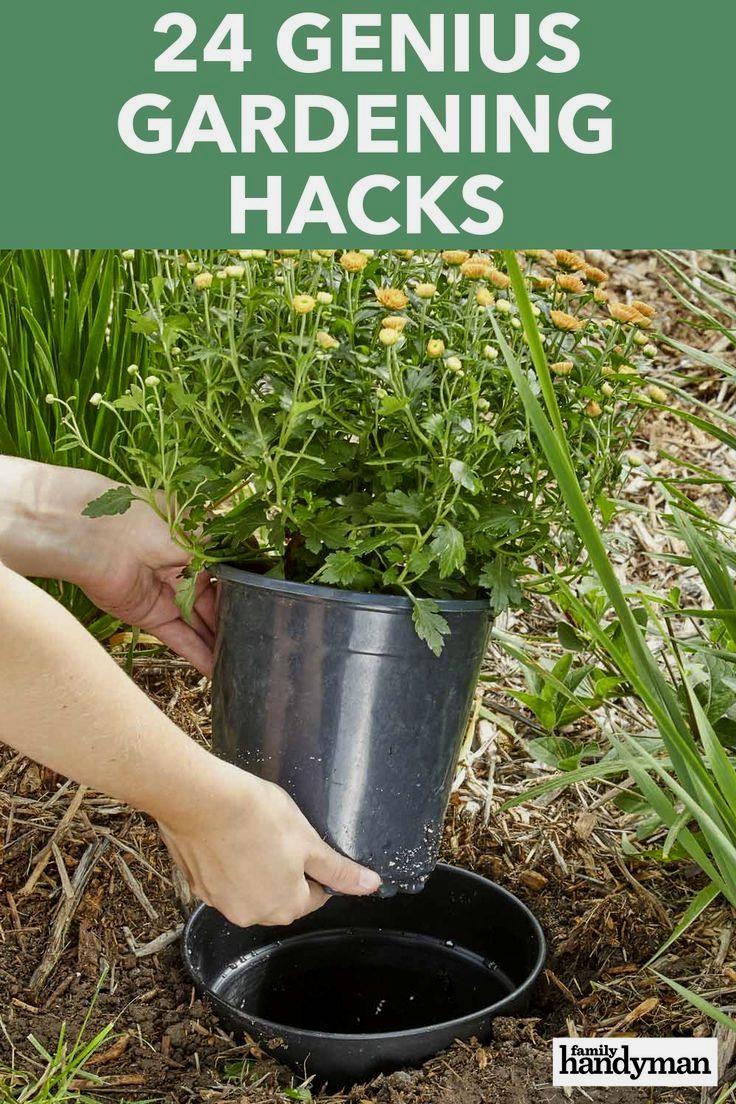 24 Genius Gardening Hacks Gardening Tips Gardening For Beginners Garden Diy Hacks Backyard gardening for profit