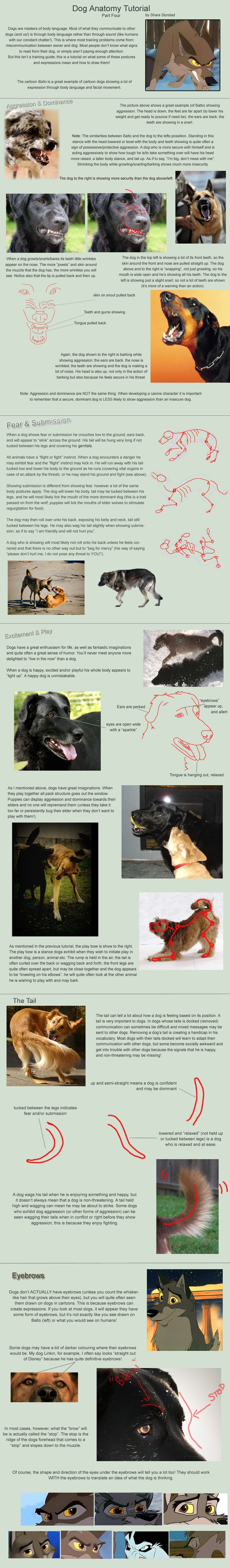 Dog Anatomy Tutorial 4 by SleepingDeadGirl.deviantart.com on @deviantART