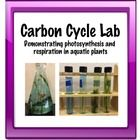 This is a fool-proof lab to demonstrate photosynthesis and respiration in aquatic plants. This lab works great when teaching about the carbon cycle...