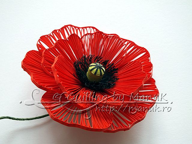 This flower is quilled. Yes QUILLED! Another incredible paper artist in the field of quilling. Quilled Poppy by Manuk