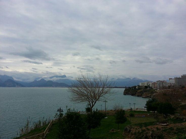 Antalya Portakal Çiçeği :)