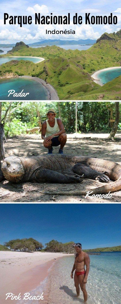 Parque Nacional de Komodo, Indonesia. Ilhas paradisíacas, dragão de komodo, praia de areia rosa, e muito mais.