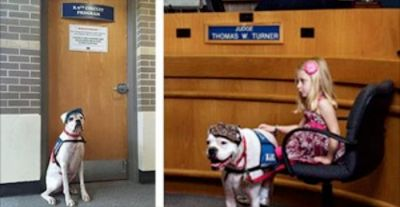 (N.Morgan)When children are required to testify in a court case, it can be a very scary and traumatic experience which mayleave scars that last a lifetime. With that in mind, the K9 Circuit Program was developed to provide support to these little...