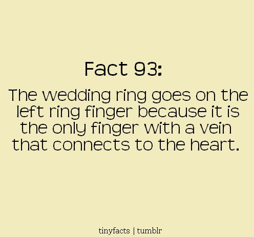 the wedding ring: Random Fact, Wedding Ring, Quotes, Facts, Wedding Ideas, Weddings, Ring Finger