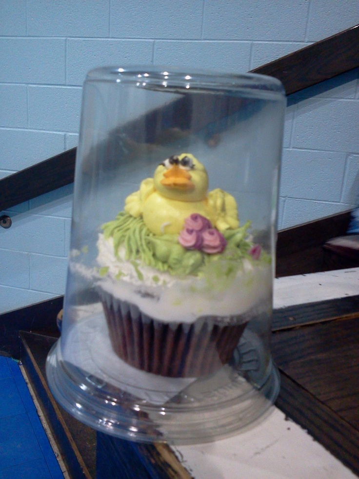 17 Images About Cupcake Containers On Pinterest Cupcake