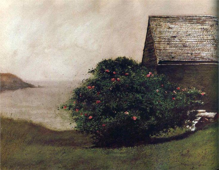 lilacsinthedooryard:    Jami Wyeth  Island Roses