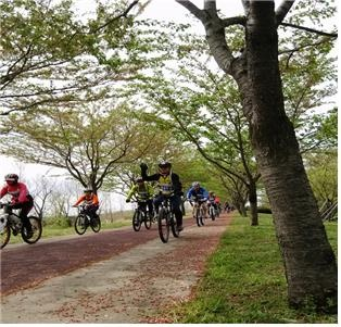 The hickly-wooded bicycle path of Nakdong river [ 나무가 잘 우거져 있는 시원한 낙동강 자전거길 ]
